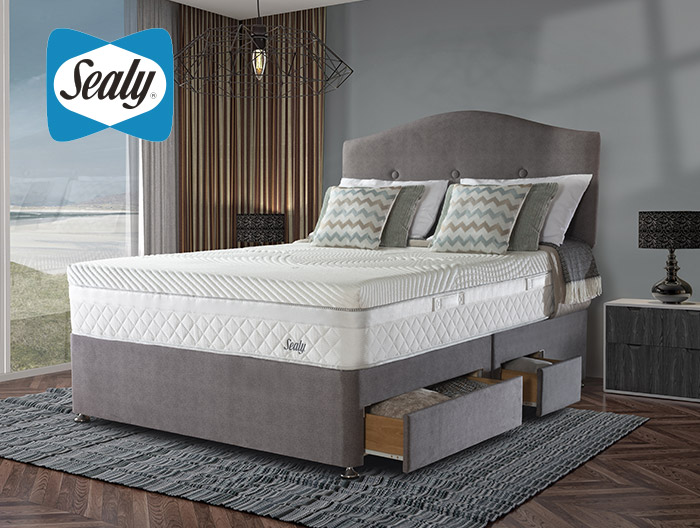 Dynamic divan collection from Sealy at Forrest Furnishing