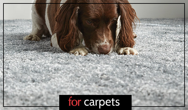 Carpets, Curtains and Flooring at Forrest Furnishing